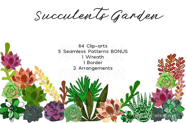 png素材 Succulents Bundle PNG  Patterns