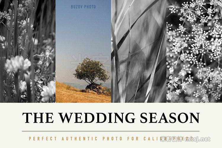 png素材 14 Wedding Season Decoration Photos