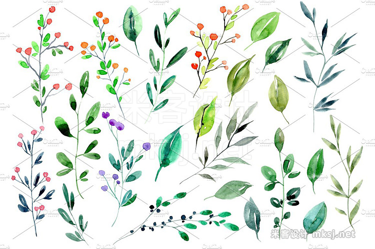 png素材 Watercolor branches leaves PNG