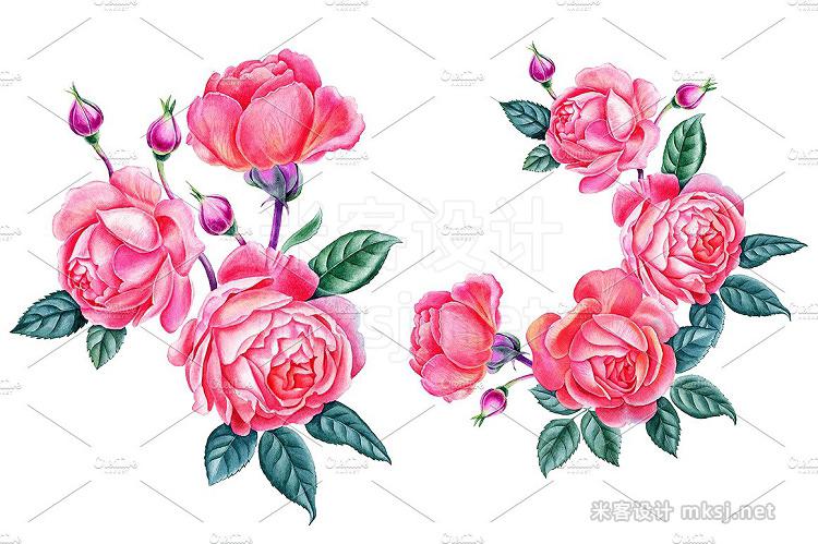 png素材 Roses