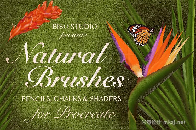 20款自然画笔Procreate笔刷合集 包含铅笔粉笔着色器 Natural Brushes for Procreate